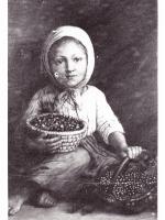 Johalka z jagodami