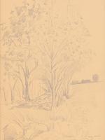 Pejzaż z Łagowa